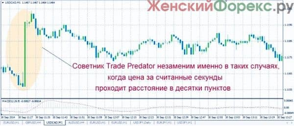 sovetnik-trade-predator