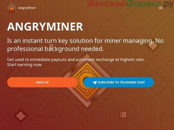 servis-angryminer