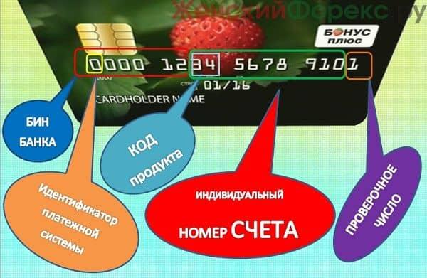 skolko-tsifr-v-nomere-karty-sberbanka